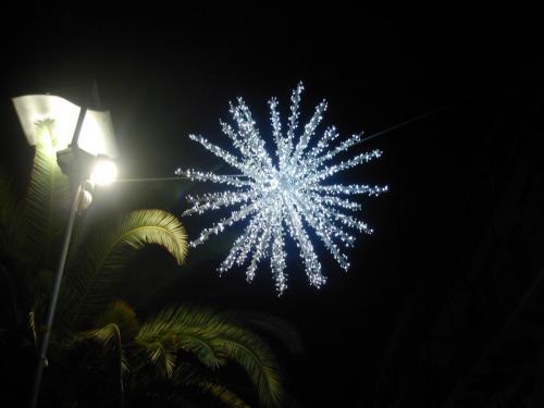 stella-luminarie