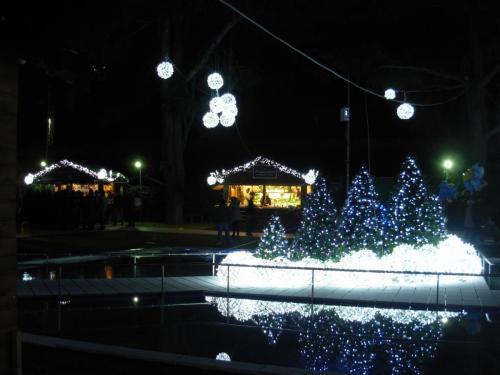 addobbi-natalizi-luminarie