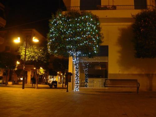 albero-luminarie-chioma