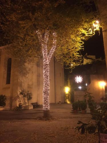 albero-tronco-luminarie
