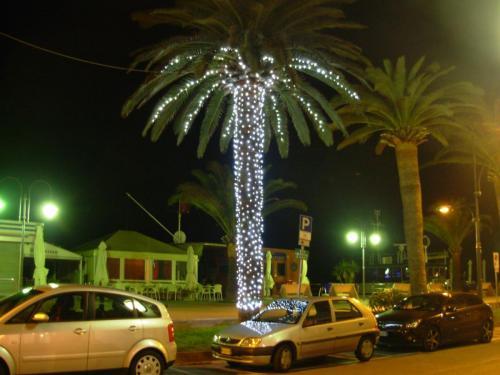 palma-luminarie-strada