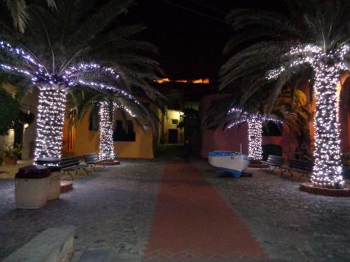 palme-luminarie