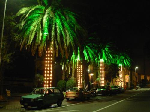 palme-riga-luminarie
