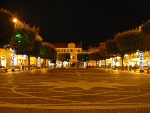 piazza-alberi-luminarie